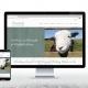 sheep farm website design
